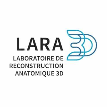 4 LARA3D